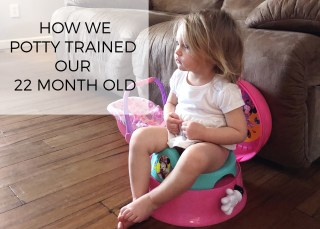 potty training our 22 month old, potty training before 2