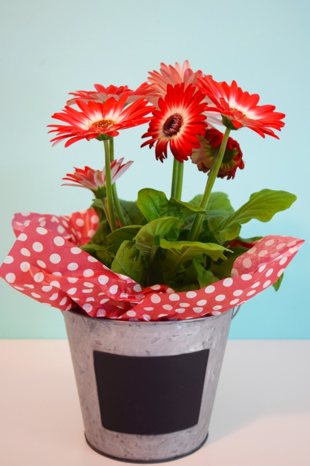 Metal Bucket Flower Container Teacher Gift