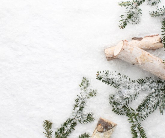Pine branches and logs on snow background - Stock Image from SC Stockshop