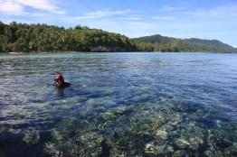 Snorkeling trip to various location in Raja Ampat