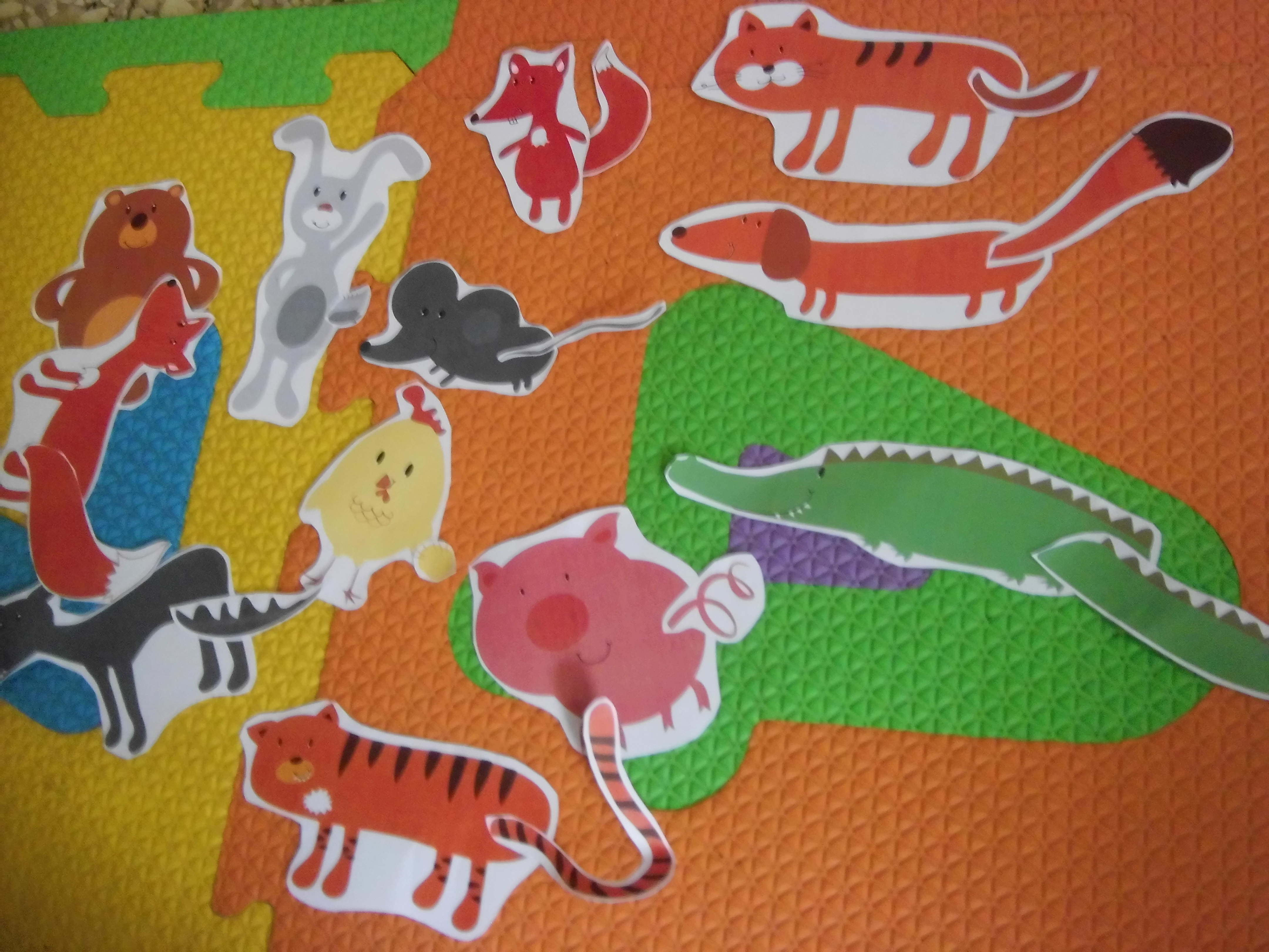 Animals Tracks And Tails
