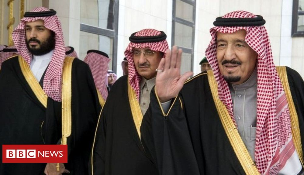 Trump Saudi royal arrests: Why top princes have been silenced