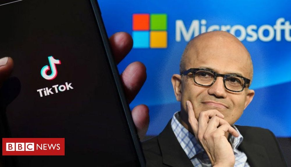 Trump Microsoft's TikTok grab: Inspired or naive?