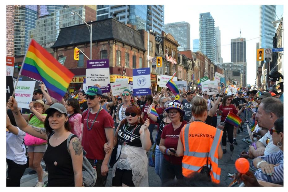 Pride As a Celebration Is De Facto a Protest