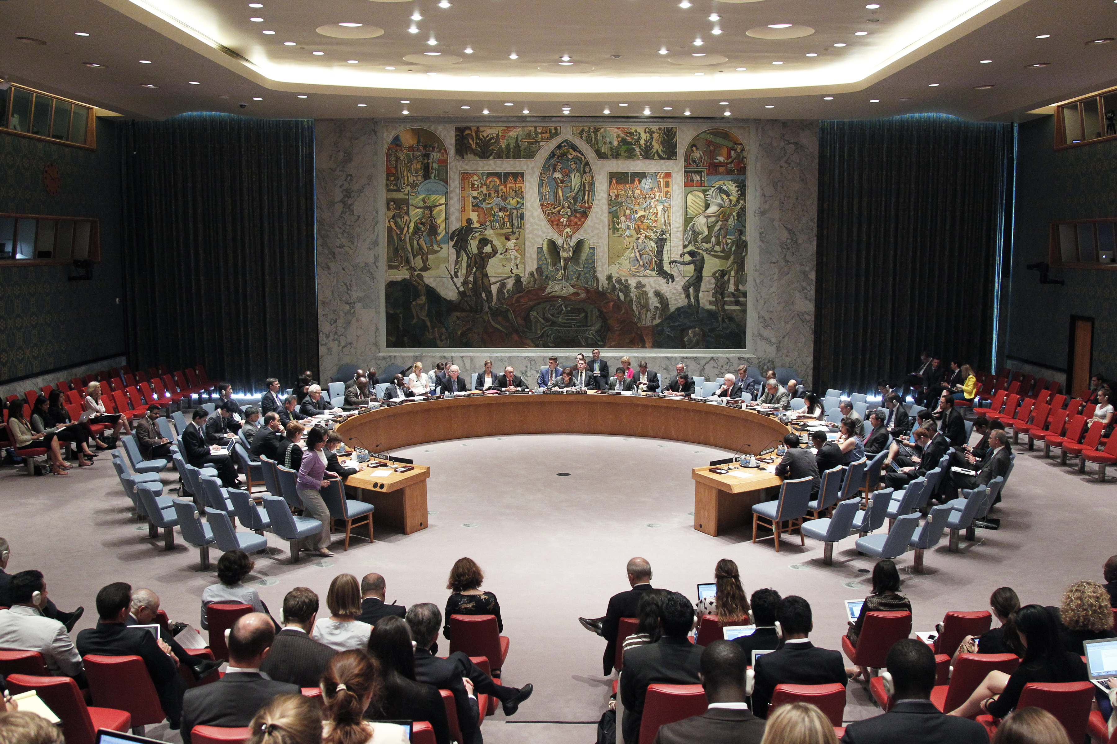 United Nations Security Council Addresses Journalist