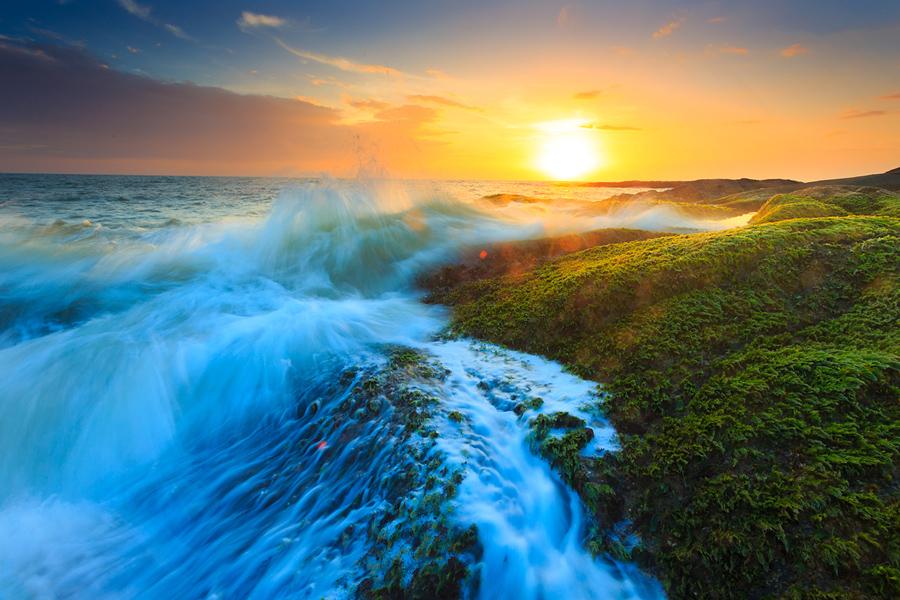 Landscapes Photography in Karnatakas Coastline Darter