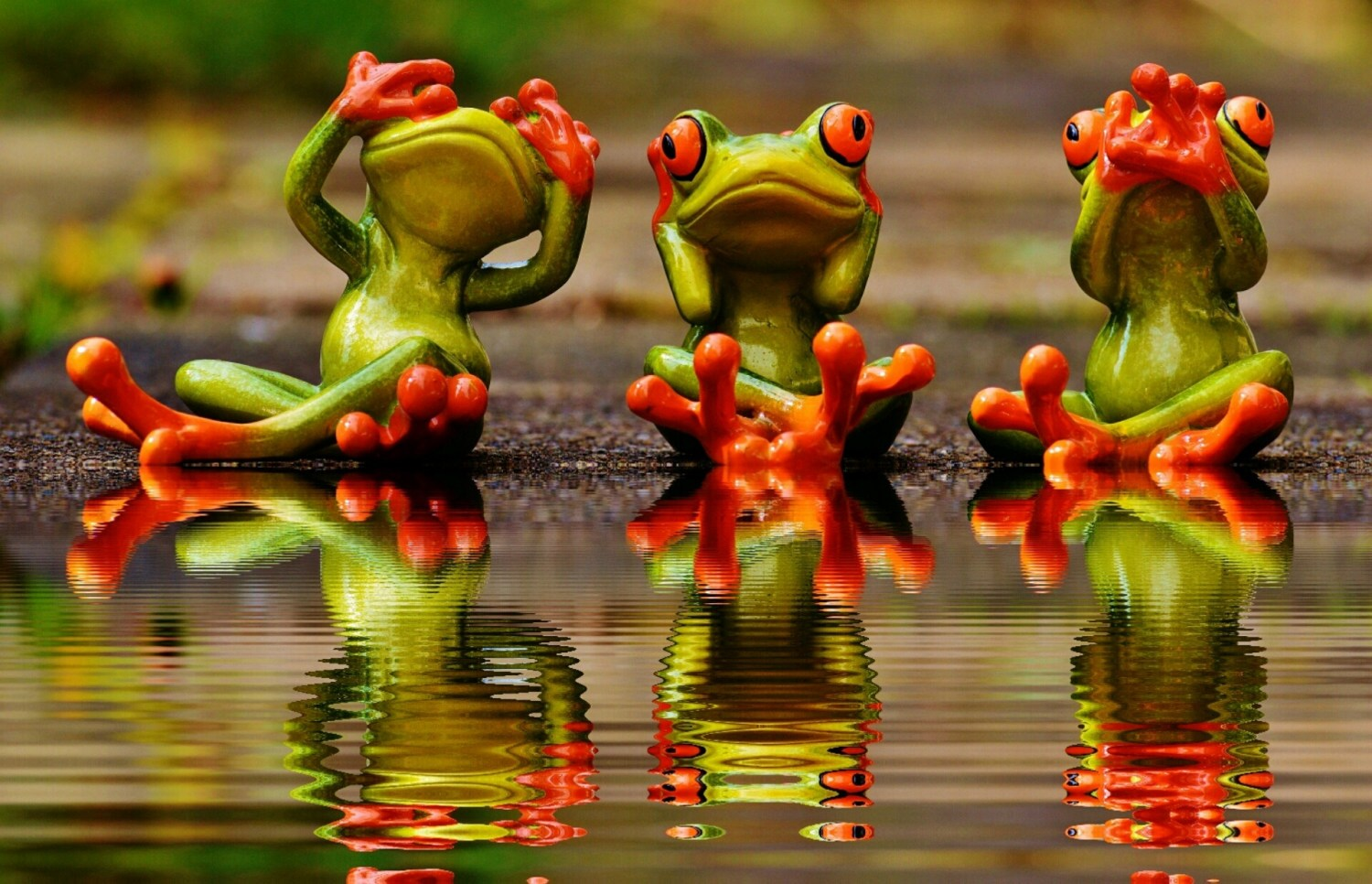 3 frogs hear see speak