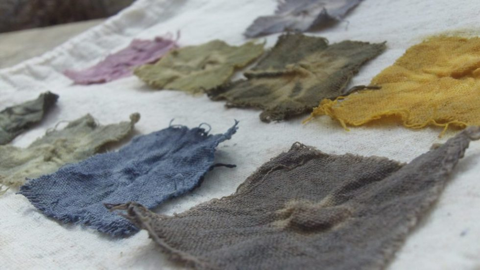 dye kit used to produce squares of cotton in different natural colours