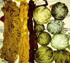 Wall nut , nettle and oak dyed wool using natural mordants.