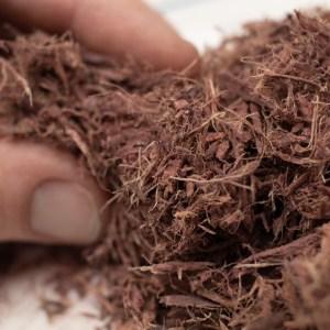 shredded mimosa hostels root bark