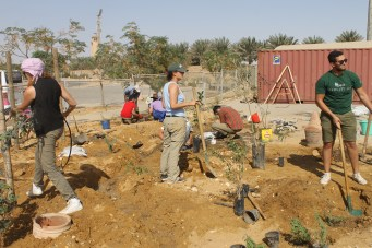 Digging and planting the new permaculture garden.