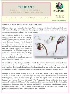 thumbnail of The Oracle February 2017