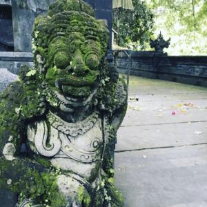 Travel - Bali 2016