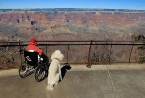 Norma and dog, Ringo, at the Grand Canyon. Credit: Driving MIss Norma/FB