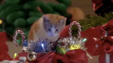 "Temptations cat treats have come up with a very funny holiday commercial called, ""Keep them busy."""