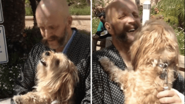 Harry Potter actor Jim Tavare breaks down in tears as he's reunited with his dog following a hospital stay.
