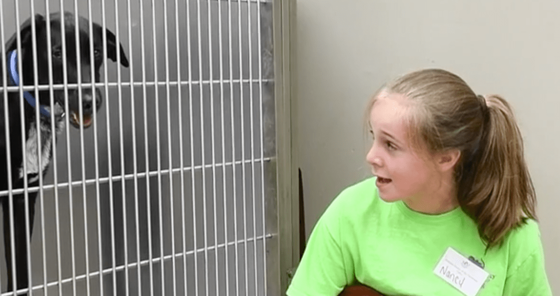 10-Year-Old Girl Sings To Shelter Animals And Helps Them Get Adopted
