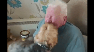 Amazing, Joyful Dog Reunion After Grandpa's Long Hospital Stay