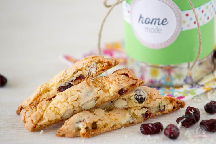Chocolate Cranberry Cantuccini