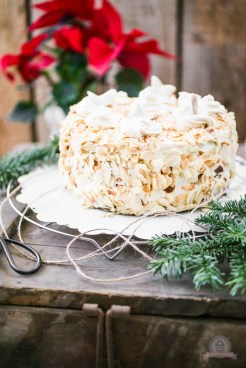 Zimtstern Baileys Torte