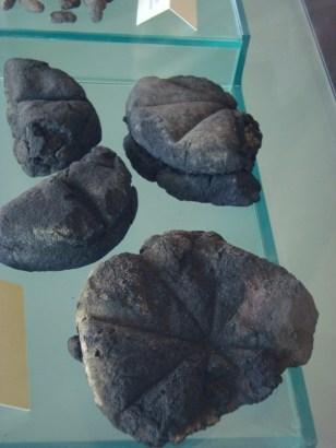 verkoold brood pompeji