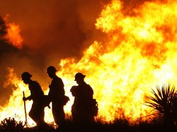 Sawtooth Complex Fire