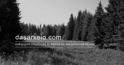 dasarxeio_logo