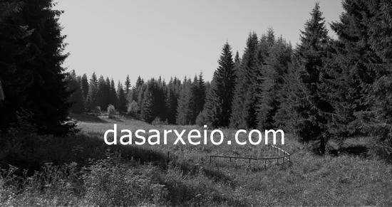 dasarxeio_image