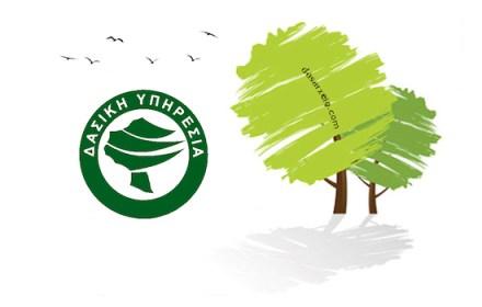 logo dasarxeio