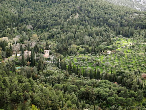 Ελληνικό μεσογειακό τοπίο, δημιουργημένο από τον άνθρωπο: Μονή Καισαριανής (από το αρχείο του συγγραφέα)