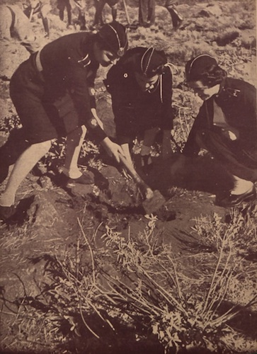 «Κοπέλες της ΕΟΝ σε αναδάσωση στην περιοχή του Σκαραμαγκά», από το περιοδικό «Η ΝΕΟΛΑΙΑ» 16-12-1939 (από το αρχείο του συγγραφέα).