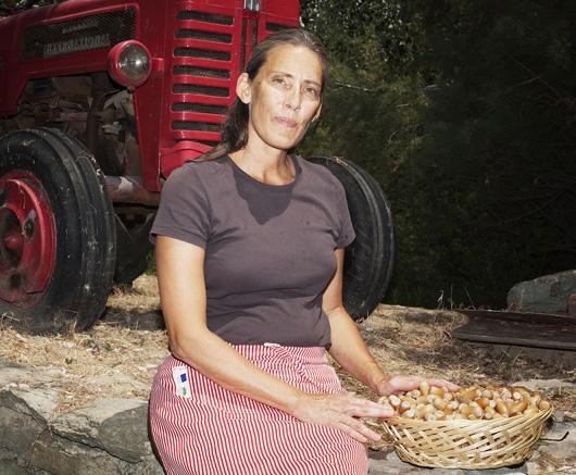 Η αμερικανίδα Μάρσι Μέιγιερ προσπαθεί να αναβιώσει στην Κέα το εμπόριο βελανιδιών. (Φωτογραφία: Enri Canaj, από http://antapokritis.wordpress.com)