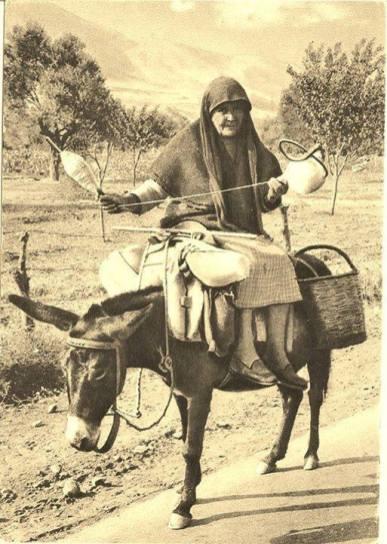 Θεσσαλία, 1955