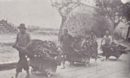 Ξύλα από τον Υμηττό μεταφέρουν με καρότσια κάτοικοι της Καισαριανής για τη θέρμανσή τους κατά την Κατοχή (πηγή: Κουβάς Γ., «Το διάβα της Καισαριανής», εκδόσεις Θ. Φασούλα, Αθήνα 1996).