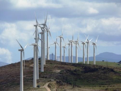 Επιτρεπόμενες χρήσεις σε αναδασωτέες εκτάσεις, όπως η εγκατάσταση ανεμογεννητριών σε αυτές (φωτογραφία από το διαδίκτυο).