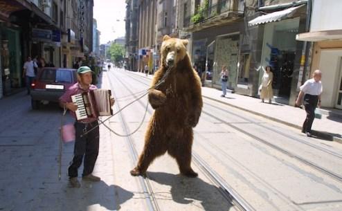 (Φωτογραφία αρχείου - www.four-paws.org.uk)