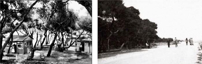 1. Η κατασκήνωση Τυπάλδου εντός του Πευκιά, δεκαετία '60 (mlp-blo-g-spot.blogspot.com) 2. Η παραλία του Πευκιά κοντά στο τουριστικό περίπτερο, σε παλαιά φωτογραφία