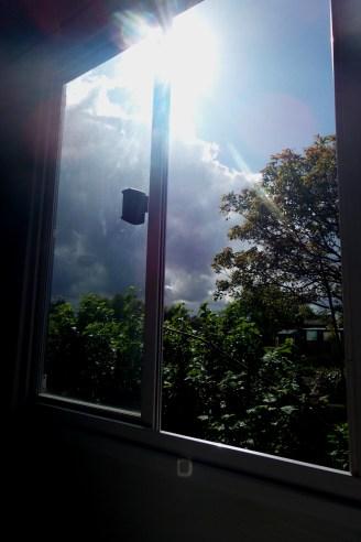 Blick aus dem Fenster des Bauwagens in den beeindruckenden Himmel und Nachbars Garten.