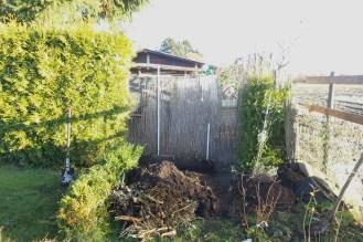 In diese Lücke sollte ein Teil der Hecke umziehen, um den Blick zum Nachbarn dicht zu machen.