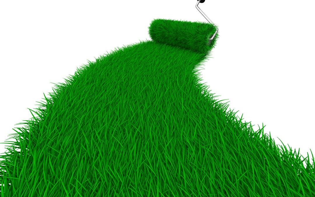 Sustainability or Greenwashing?
