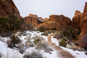 trail through Arches National Park