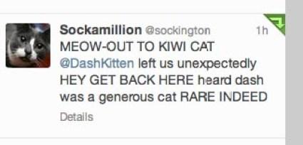 When Sockington Shouts