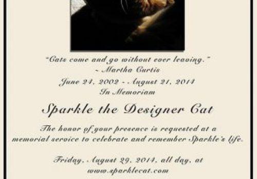 Sparkle Cat Memorial Image
