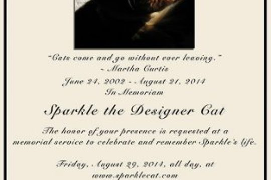 Sparkle Cat Memorial Image