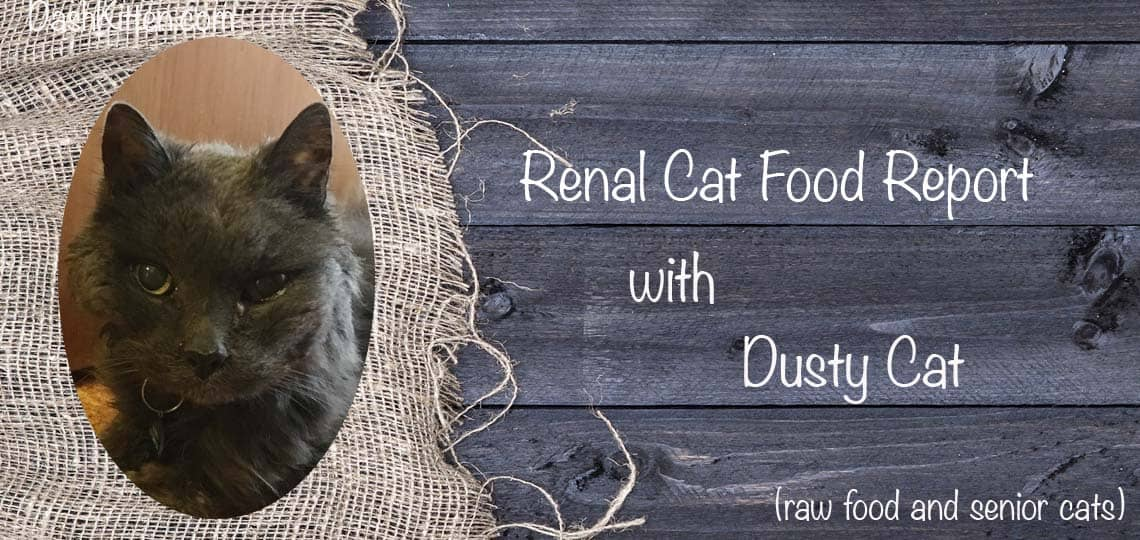Renal Cat Food with Dusty