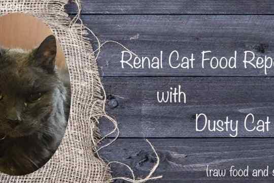 Renal Cat Food Report