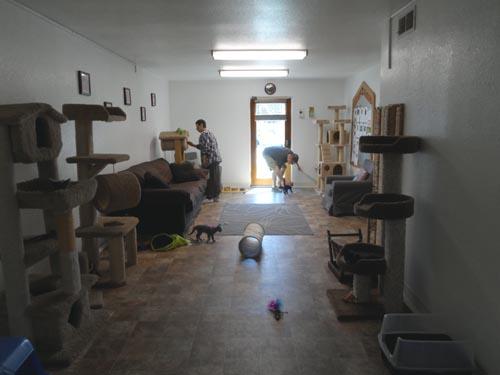 Kitty Corner, Peasant Hill CA