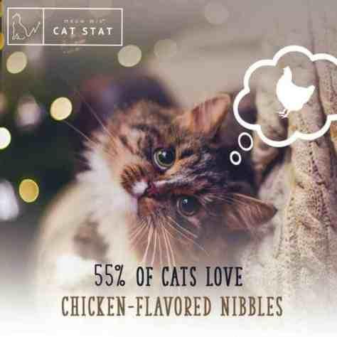 CatStats_4c