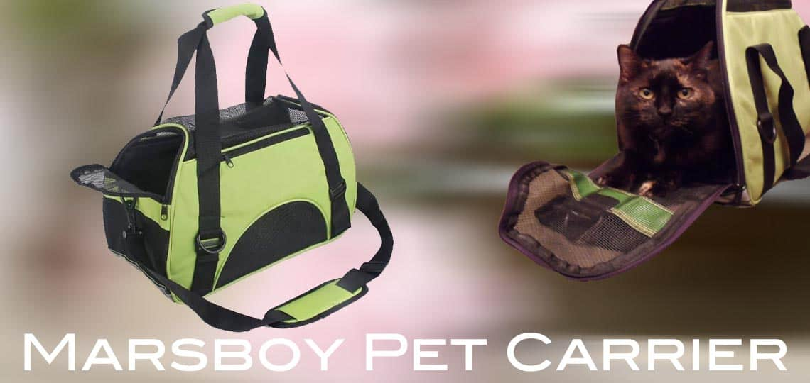 Pet carrier graphic Marsboy