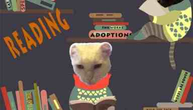 Thankful Thursday Blog of Cats reading